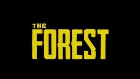 PSX 2017 : The Forest sort du bois sur PlayStation 4