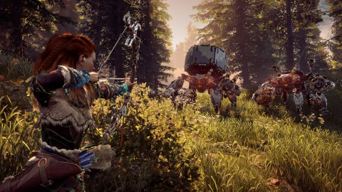 Test Horizon : Zero Dawn